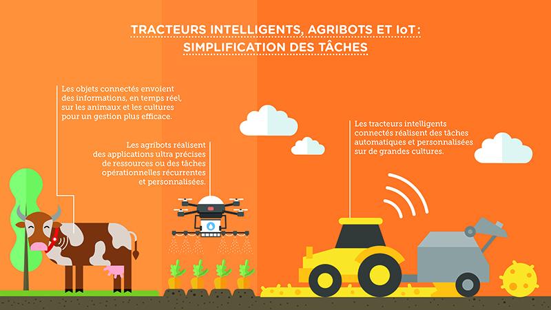 Smart farming: tracteurs intelligents, agribots et simplification des tâches